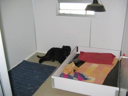 Sala Parto Per Cani : La cucciolata presa sul serio parte quinta: il parto ti presento