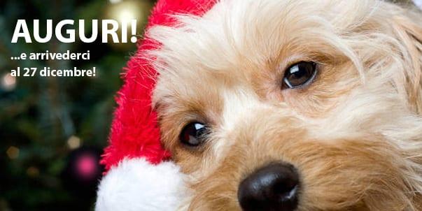Immagini Natalizie Con Cani.Buon Natale Ti Presento Il Cane