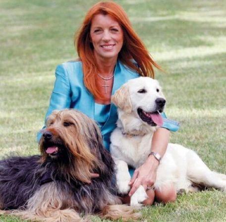 Perch ho eliminato l 39 articolo sul canile della brambilla ti presento il cane - Perche i cani scavano sul divano ...