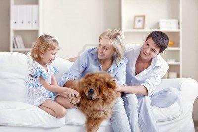 chiw-famiglia
