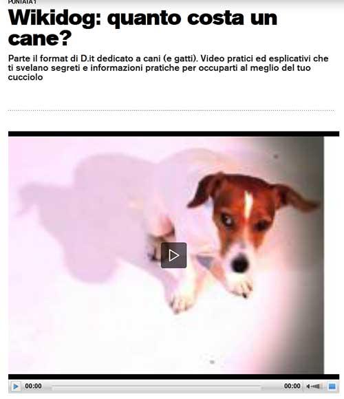 wikidog.1