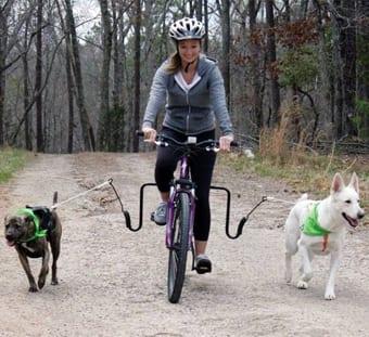 ragazze-bicicletta-cani