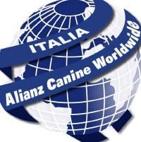 alianz_logo_index