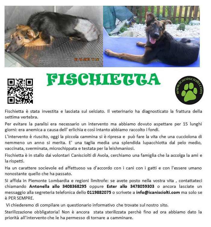 fischietta_appello