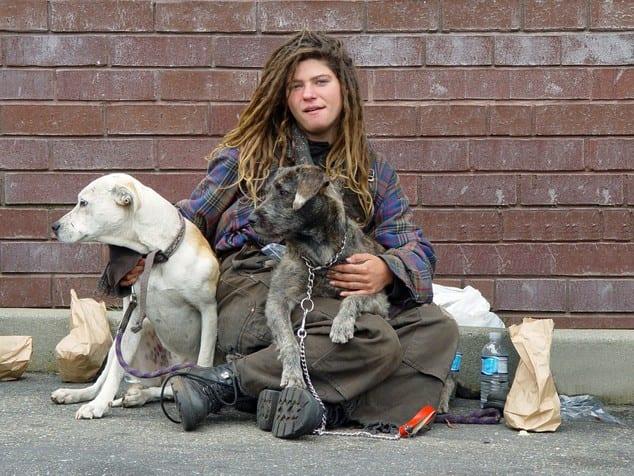 homelessbis2