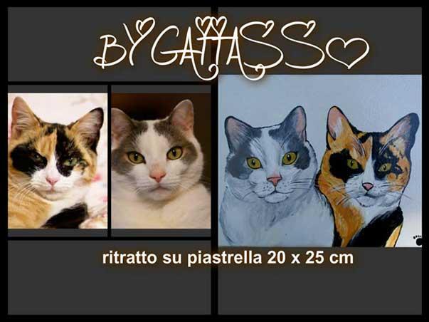 gattasso4