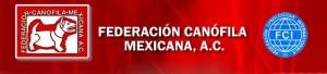 federazione_messicana
