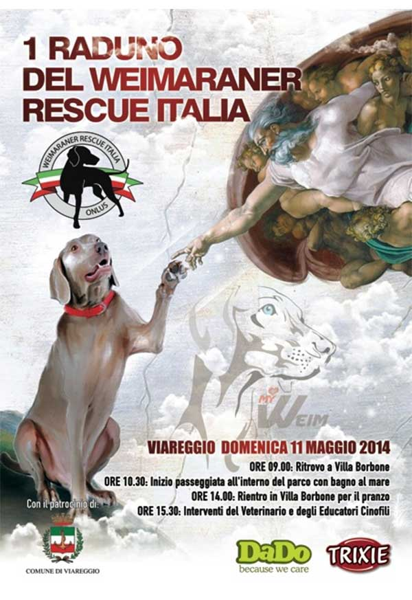 weim_rescue1