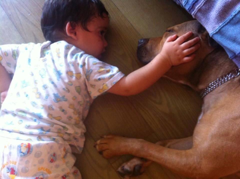 Alba e il suo umanino