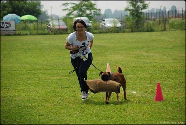 Però è vero che facciamo utilità e difesa... e infatti si vede quanto cani e conduttori siano depressi e infelici!