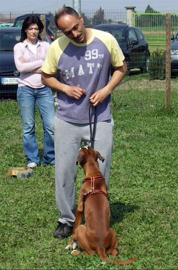 Addestratore maschio (eh, sì... qualcuno lo abbiamo anche noi) con cane palesemente sofferente, che indossa strangolo e museruola a prescindere
