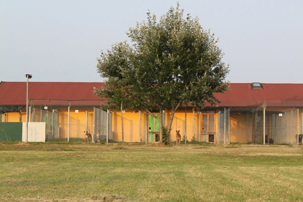 rifugio c.i.p.a. 5