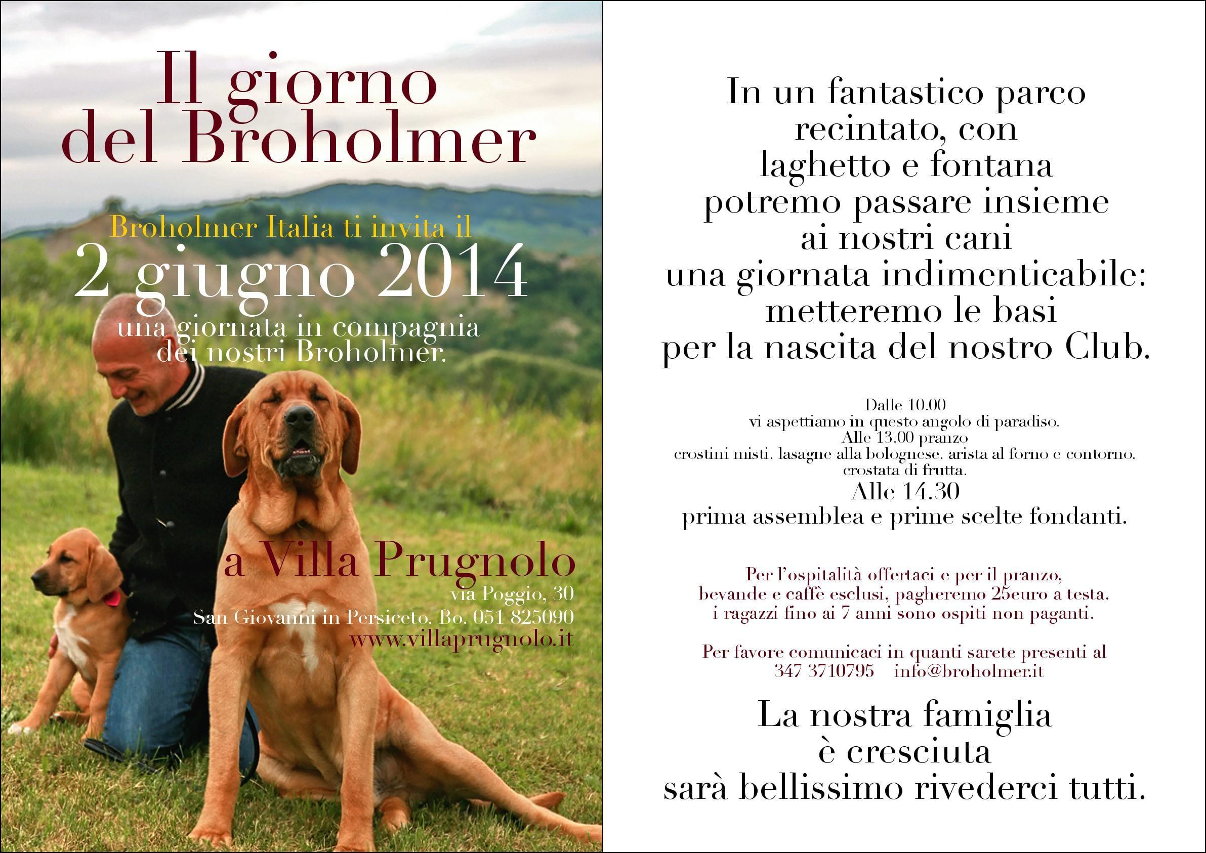 broholmer-1  (2)
