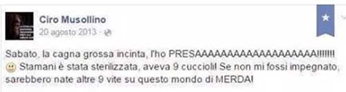 musollino7
