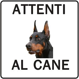 attentialcane