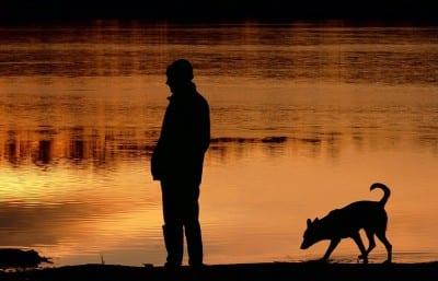 A man and his dog take a walk as sun set