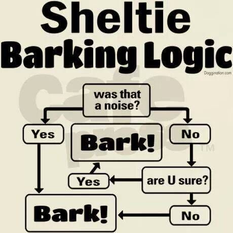 barking logic
