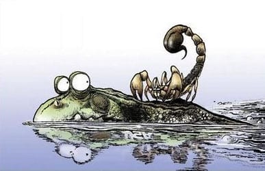 rana-scorpione
