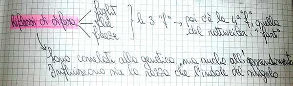 encifab2
