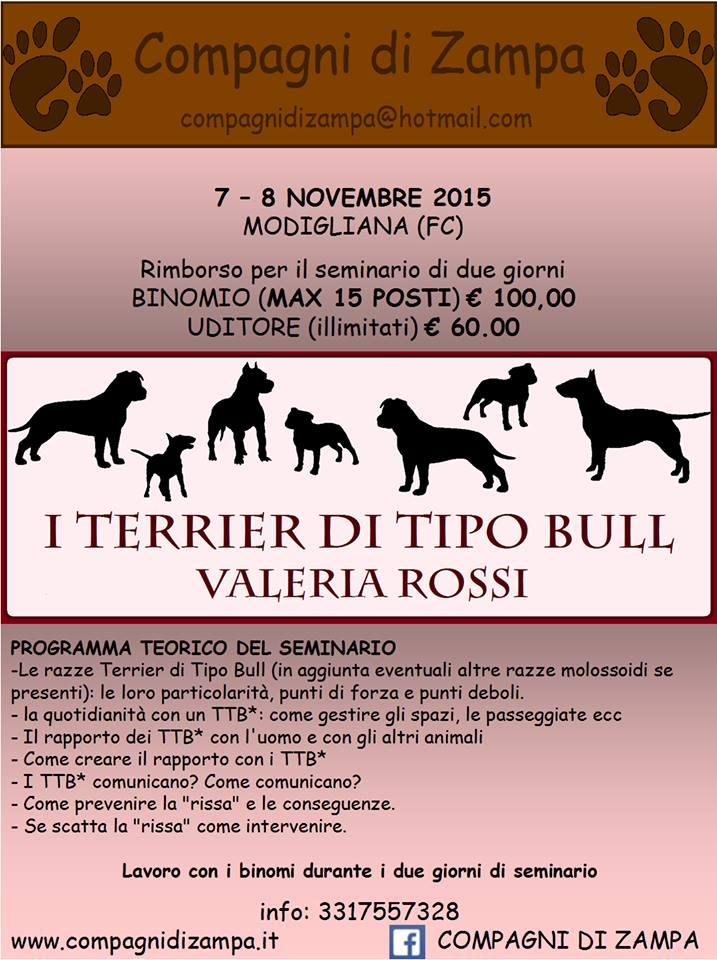 seminario_bulli