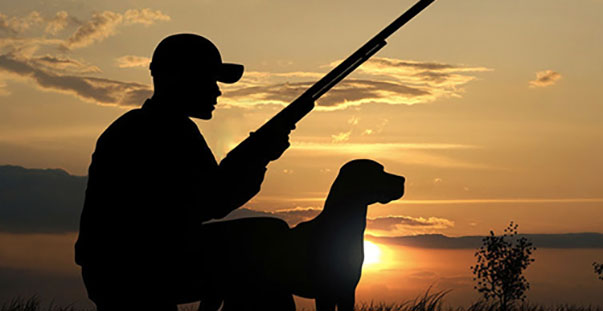 Una lancia spezzata a favore dei cacciatori e non della for Animali domestici della cabina di nashville