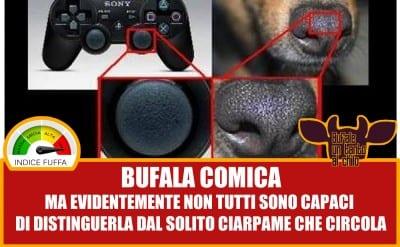 bufalanaso