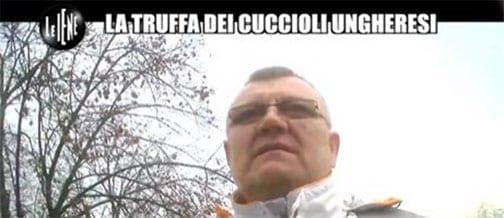 Buon Natale Cani Della Biscia.Le Iene Buon Servizio Sui Cani Dell Est Peccato Il Finale Ti