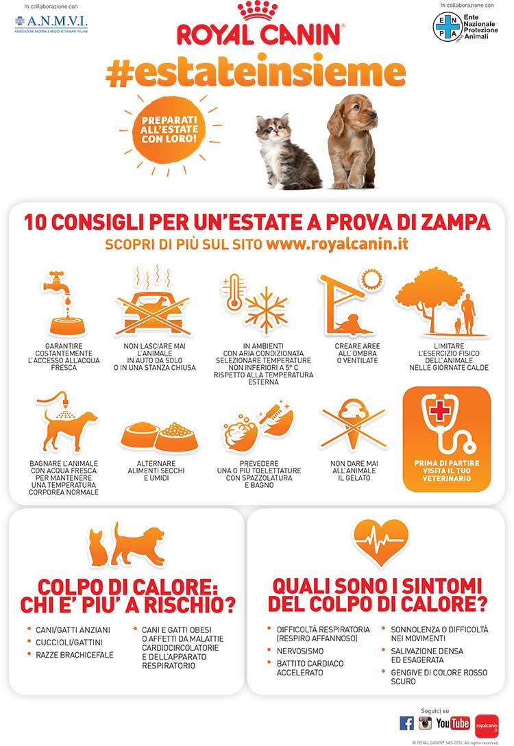infografica_estateinsieme