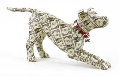 cane_soldi_apertura