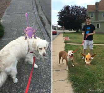 pokemon-go-dog-walking-animal-shelter-muncie-14-335x300