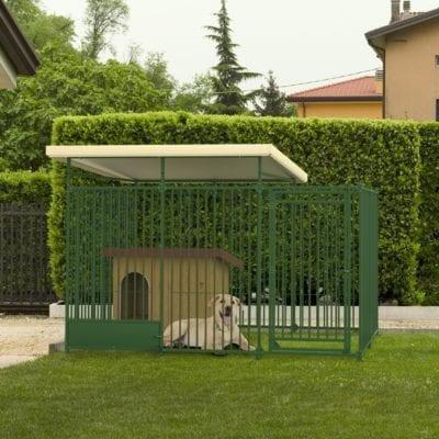 cane_giardino