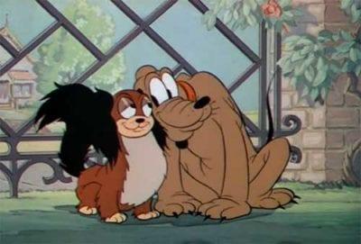 Ti presento pluto & co ti presento il cane