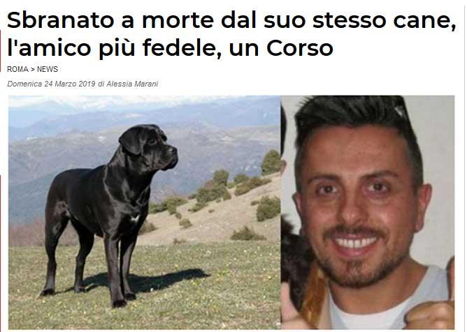 Stavolta Il Cattivo è Il Cane Corso O Forse No Ti Presento Il Cane