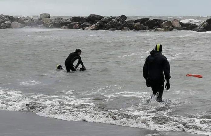 Allenamento cani in acqua