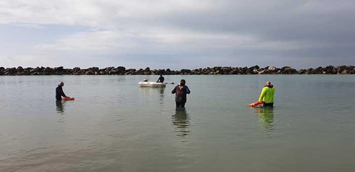 Allenamento di lavoro in acqua Marina di Pisa