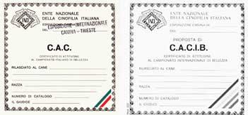 Cartellini CAC e CACIB