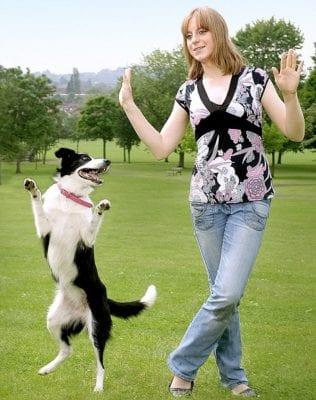 dogdance2